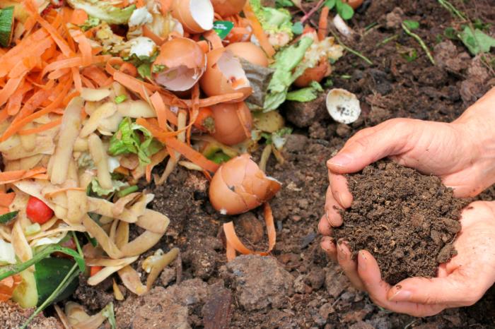homemade-plant-fertilizer-e1419340319506