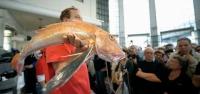 Fish & Tips (dicas de peixe)