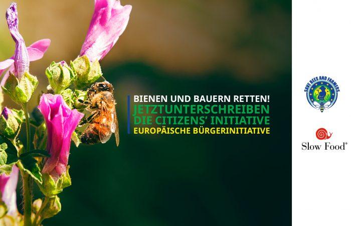 Slow Food Europa: Die neue Biodiversitätsstrategie der EU muss Bienen und Bestäuber schützen