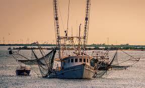 Slow Fish New Orleans en résumé : chaînes de valeur, privatisation des mers et food movement