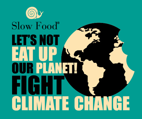 Let's Not Eat Up the Climate – Slow Food's Appeal Ahead of COP22 in Marrakesh