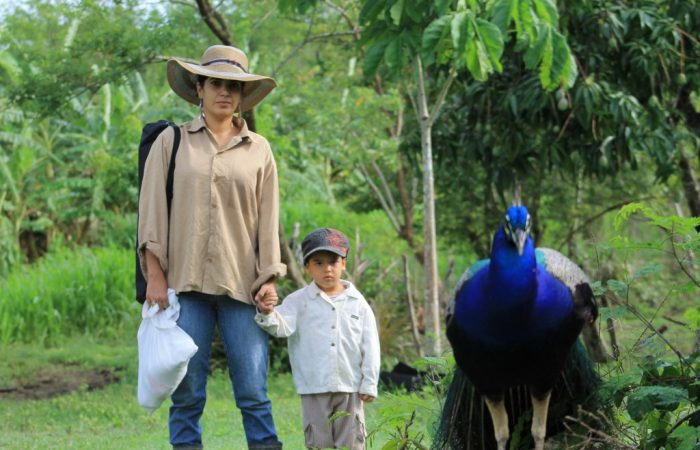 Menu for change: Leidy Casimiro Rodriguez