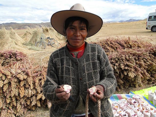 Agriculture andine dans la région de Cusco-Puno, Pérou, site SIPAM depuis 2011