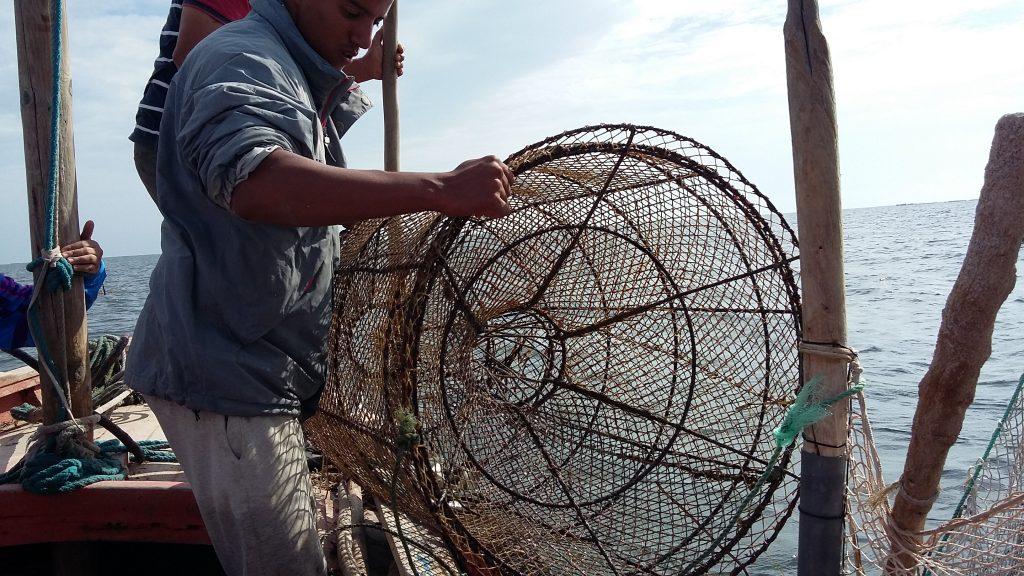 tunisia-slow-fish-sustainable-fishing-nets-traps