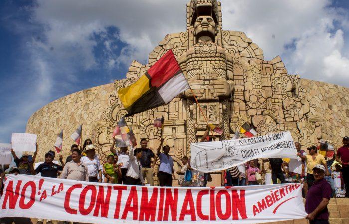 Ellos son gigantes, pero nosotros somos multitud: cierra una granja industrial en México