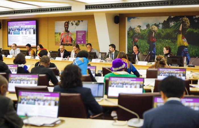 Fourth Global Meeting of the Indigenous Peoples' Forum at IFAD