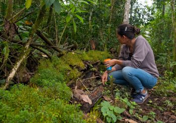 Bringing Slow Food to the Galapagos: The Luxury of Sustainable Farming