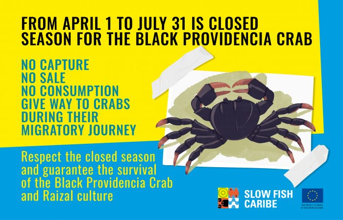 The Black Providencia Crab Closed Season