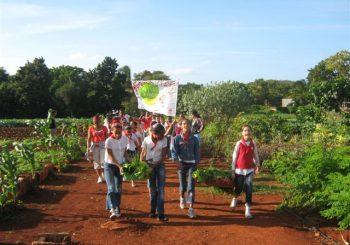 Slow Food: Construyendo Comunidad y Solidaridad como un Movimiento Global