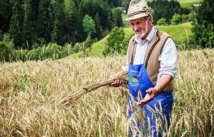 Better Safe than Sorry: Austria Wants Ban on Glyphosate
