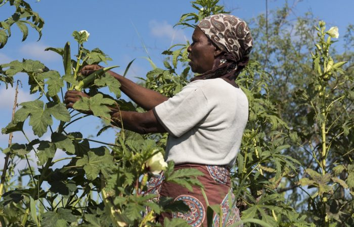 820 million People Still Suffering: Slow Food on Bolder Policies and Stronger Communities