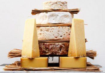 Alles, was Sie schon immer über Käse wissen wollten, aber bisher nicht zu fragen wagten