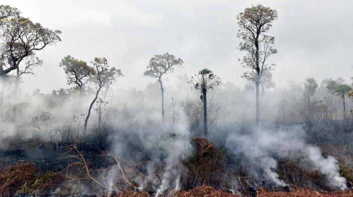 Bolivia amazónica arde, crónica de una muerte anunciada