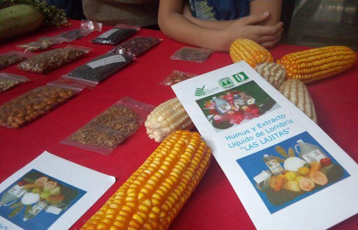 Una mirada innovadora desde el mundo de las agroecologías emergentes en Venezuela