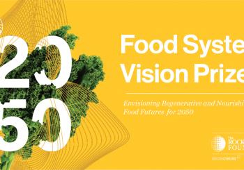 Você tem uma Visão para o sistema alimentar ideal para 2050?