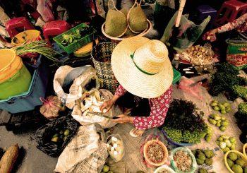 Des centaines d'évènements organisés dans le monde entier pour fêter les 30 ans de Slow Food