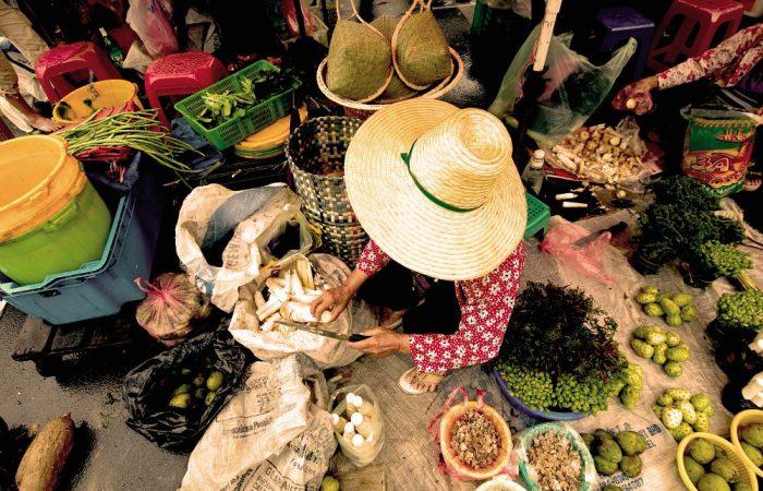 Hunderte Veranstaltungen auf der ganzen Welt, um das 30-jährige Jubiläum von Slow Food zu feiern