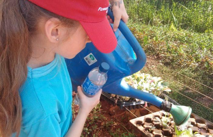 Granja la Lechuza, un centro social rural para la agroecología y la agricultura agroforestal