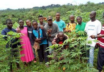 Récits de 30 ans d'histoire Slow Food : Agroécologie et émancipation en Sierra Leone