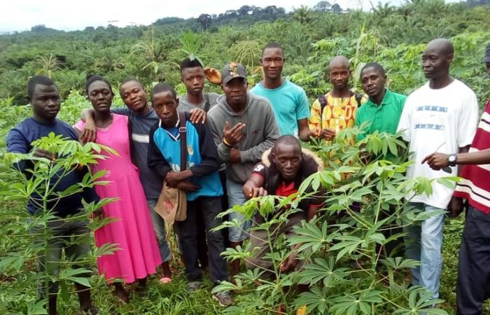 30-Year Celebration Stories: Agroecology and Empowerment in Sierra Leone