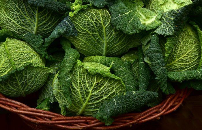 Ein Rezept für den Meatless Monday – Wirsing-Risotto