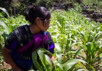 Indigenous Youth and Women of the Americas Unite their Voices