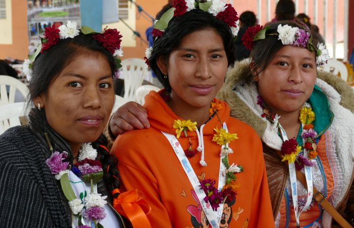 Indigenous Communities of the Americas Create Change