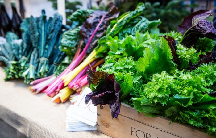 Gardening Communities: Agroecology and Gardening within the Slow Food Global Network