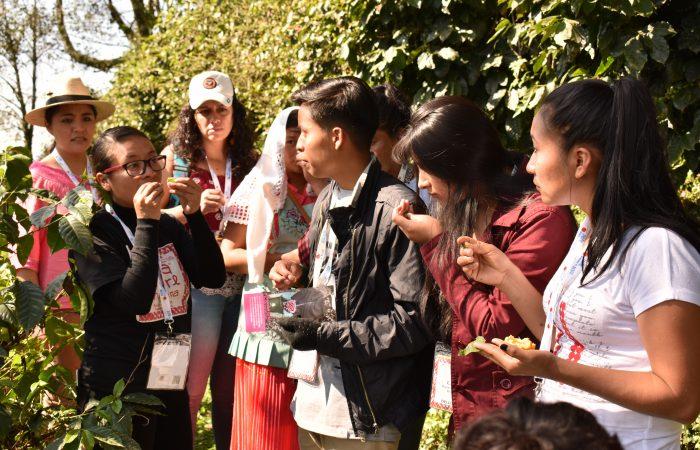 Jóvenes Indígenas en acción para la defensa de los sistemas alimentarios