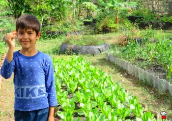 Slow Food Cuba: COVID-19 no nos detendrá