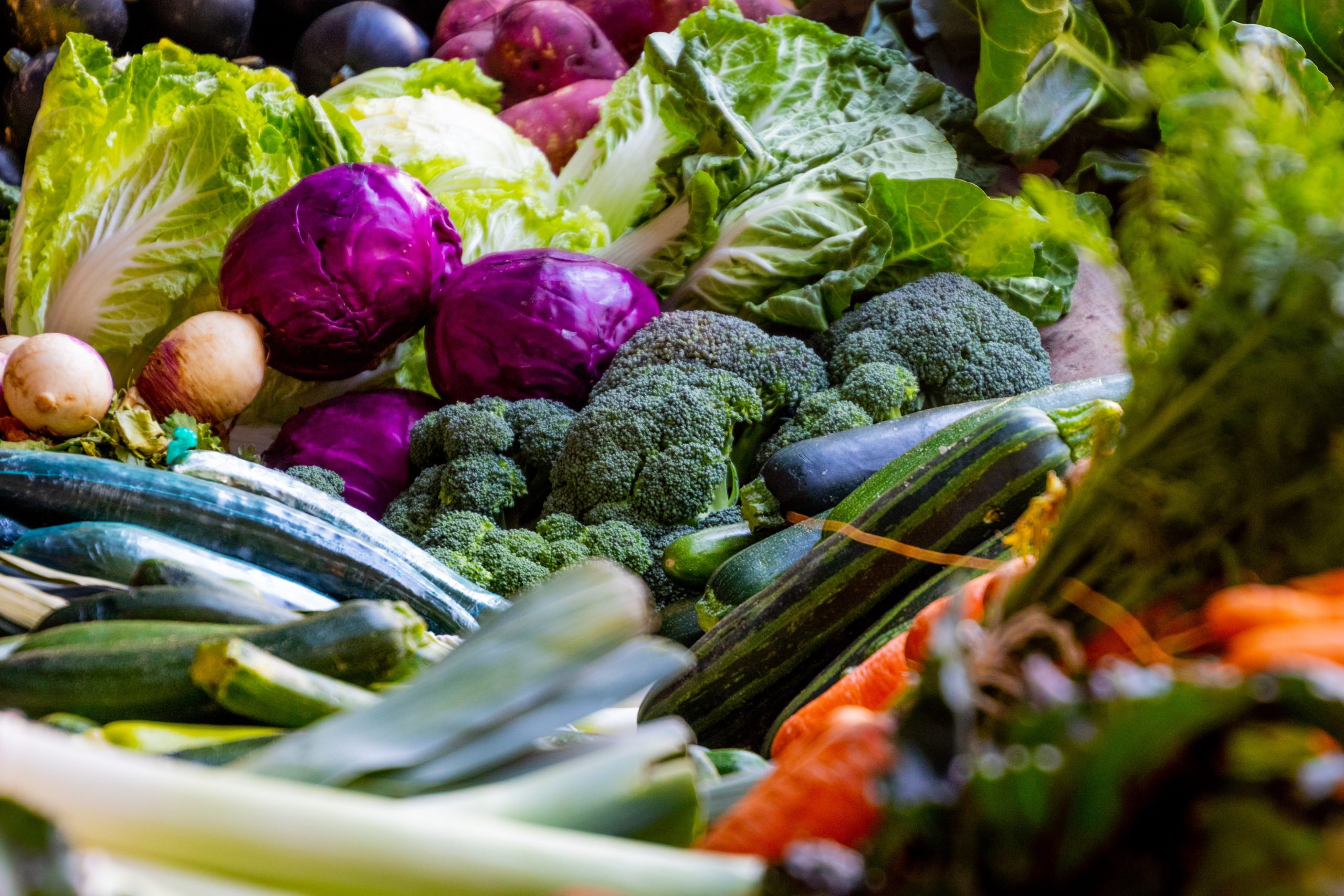 World Health Day: Claiming the Right to Healthy Food - Slow Food  International