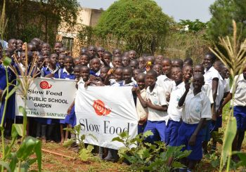 School gardens: education without borders that guarantees a better future