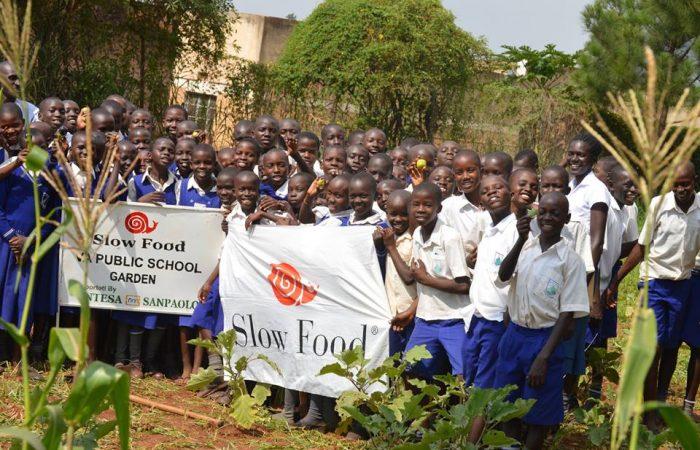 Hortas escolares: educação sem fronteiras para garantir um futuro melhor