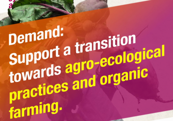 European NGOs Demand the CAP that Supports Agroecology