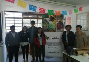 Latin American youth promote sustainable food production and consumption