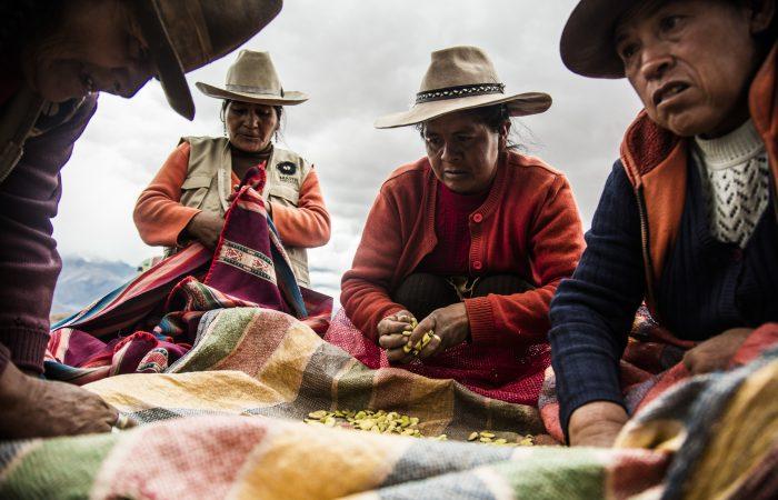 United for a GMO-free Peru