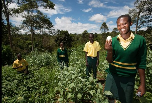 At school for biodiversity: 5 new gardens in Africa involving 5 thousand girls and boys
