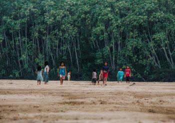 Brazil's Cerrado: A Cry for Help
