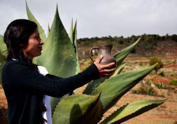 Un Sistema Participativo de Garantía para los Baluartes (Indígenas) de Slow Food